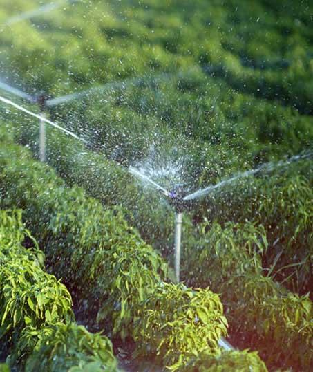 Good Guys Property Maintenance Inc Irrigation System Repair