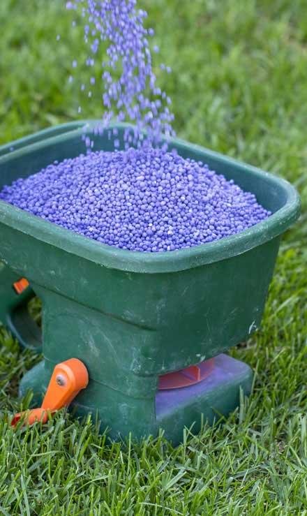 Good Guys Property Maintenance Inc  Lawn Fertilization