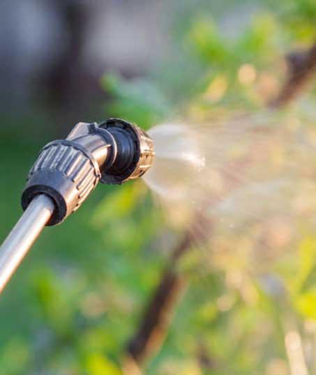 Good Guys Property Maintenance Inc Lawn Pest Control