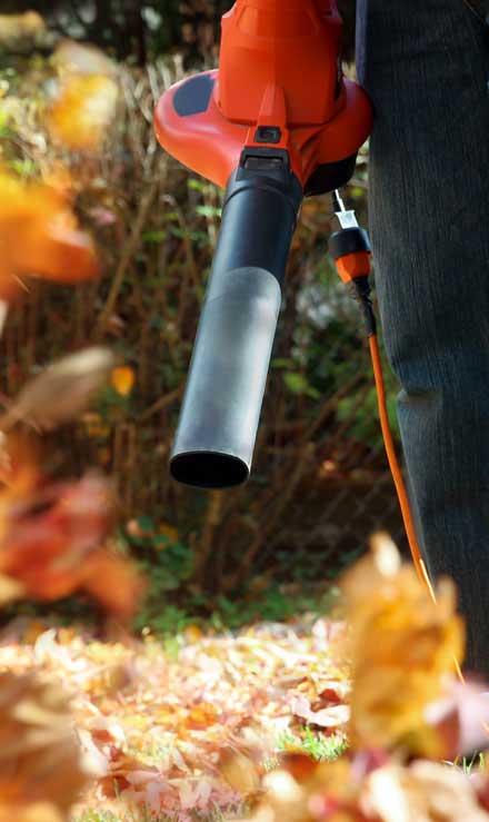 Good Guys Property Maintenance Inc Leaf Removal